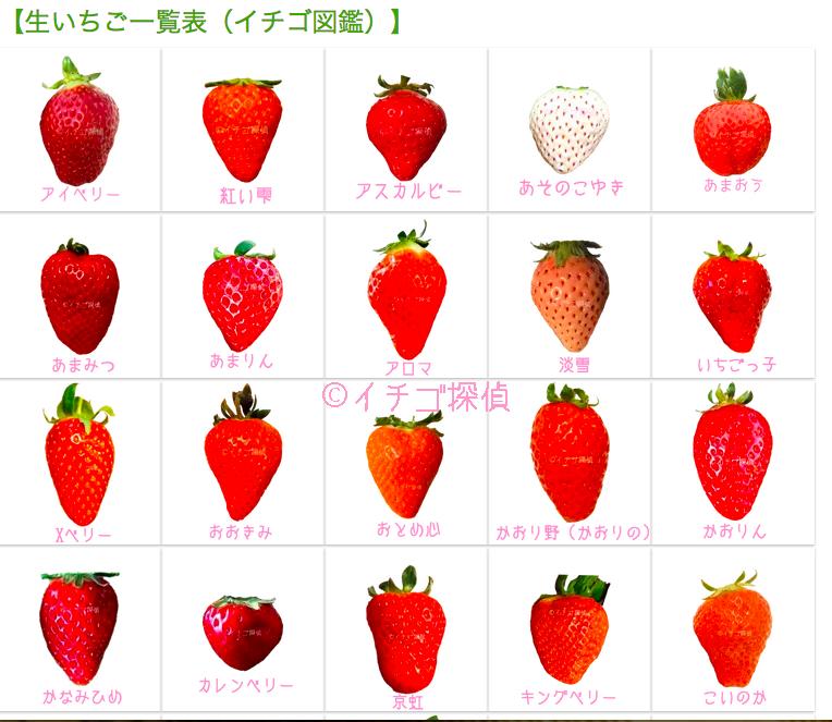 イチゴの画像 p1_13